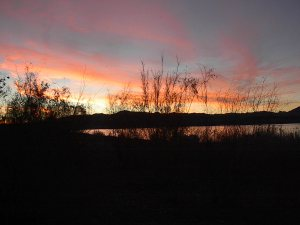 One of our favorite spots for Boondocking - Alamo Lake Arizona.