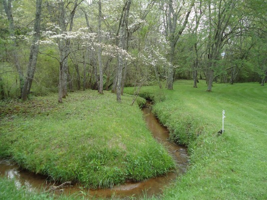 Lots of weedeating along our streams.